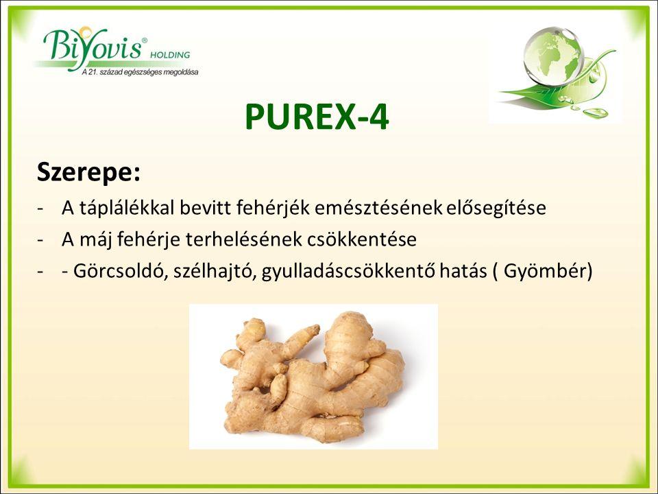 PUREX-4 Szerepe: -A táplálékkal bevitt fehérjék emésztésének elősegítése -A máj fehérje terhelésének csökkentése -- Görcsoldó, szélhajtó, gyulladáscsökkentő hatás ( Gyömbér)