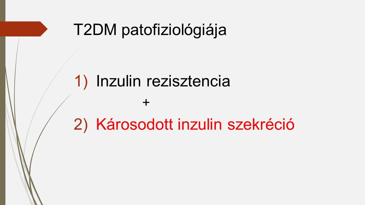 1)Inzulin rezisztencia + 2)Károsodott inzulin szekréció T2DM patofiziológiája