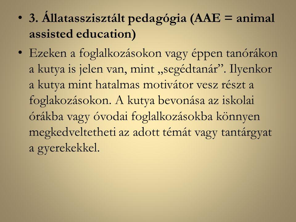 """3. Állatasszisztált pedagógia (AAE = animal assisted education) Ezeken a foglalkozásokon vagy éppen tanórákon a kutya is jelen van, mint """"segédtanár""""."""