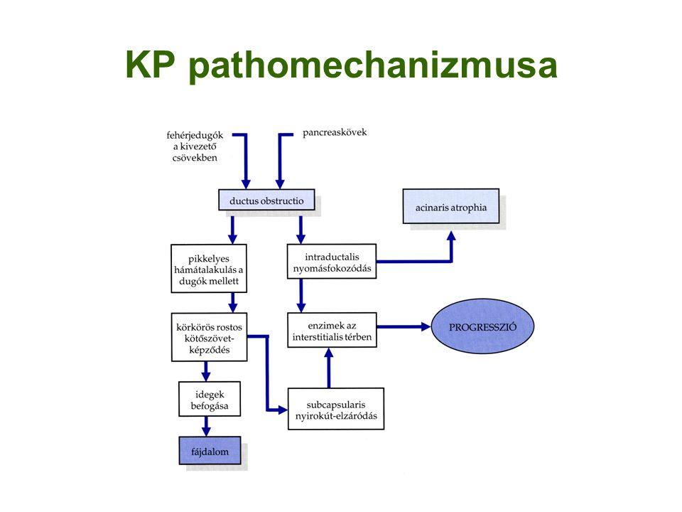 KP pathomechanizmusa