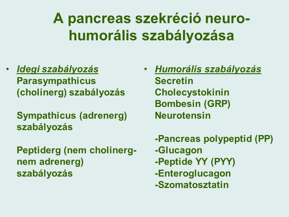 A pancreas szekréció neuro- humorális szabályozása Idegi szabályozás Parasympathicus (cholinerg) szabályozás Sympathicus (adrenerg) szabályozás Peptiderg (nem cholinerg- nem adrenerg) szabályozás Humorális szabályozás Secretin Cholecystokinin Bombesin (GRP) Neurotensin -Pancreas polypeptid (PP) -Glucagon -Peptide YY (PYY) -Enteroglucagon -Szomatosztatin
