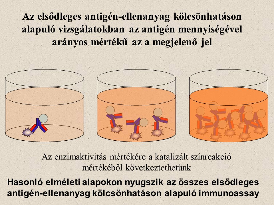 Cytokine array A Western-blot blotolási lépését követő részére hasonlít ( - ) IFN  ( + ) IL-2IL-4… … MIP3β… különféle kikötött specifikus ellenanyagok Vizsgálandó citokin tartalmú oldat Jelzett ellenanyagok keveréke Sokféle citokin gyors meghatározására alkalmas Hátrány – a blot memrán nagy felülete miatt viszonylag nagy térfogatú/hígított mintára van szükség