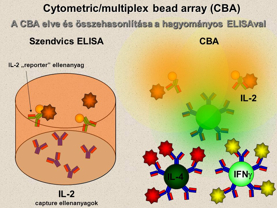 "A CBA elve és összehasonlítása a hagyományos ELISAval Szendvics ELISACBA Cytometric/multiplex bead array (CBA) IL-2 capture ellenanyagok IL-2 IL-4 IFN  IL-2 ""reporter ellenanyag"