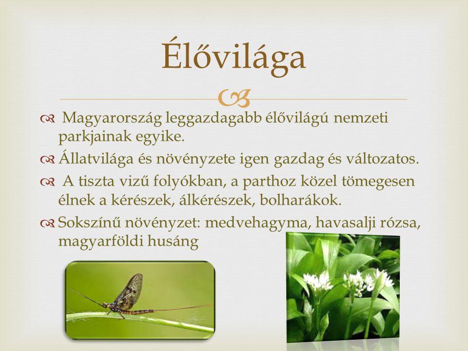   Magyarország leggazdagabb élővilágú nemzeti parkjainak egyike.  Állatvilága és növényzete igen gazdag és változatos.  A tiszta vizű folyókban, a