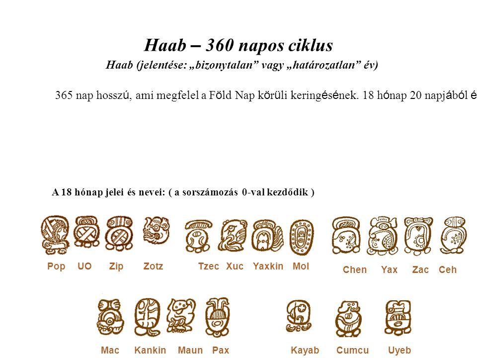 Haab – 360 napos ciklus 365 nap hossz ú, ami megfelel a F ö ld Nap k ö r ü li kering é s é nek.