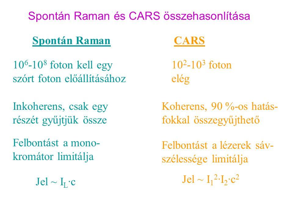 Spontán Raman és CARS összehasonlítása Spontán RamanCARS 10 6 -10 8 foton kell egy szórt foton előállításához 10 2 -10 3 foton elég Inkoherens, csak egy részét gyűjtjük össze Koherens, 90 %-os hatás- fokkal összegyűjthető Felbontást a mono- kromátor limitálja Jel ~ I 1 2 ·I 2 ·c 2 Jel ~ I L ·c Felbontást a lézerek sáv- szélessége limitálja