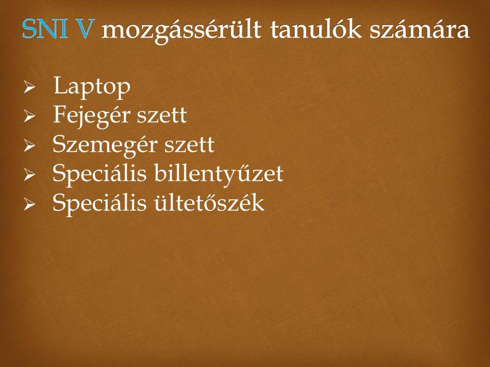  Laptop  Fejegér szett  Szemegér szett  Speciális billentyűzet  Speciális ültetőszék
