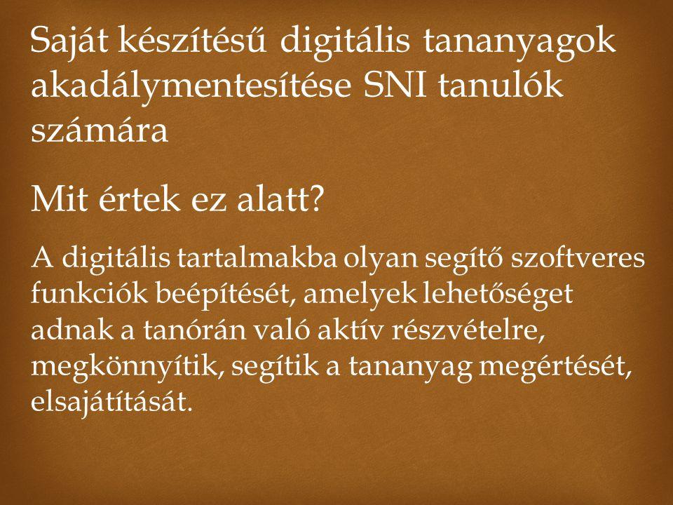 Saját készítésű digitális tananyagok akadálymentesítése SNI tanulók számára Mit értek ez alatt.