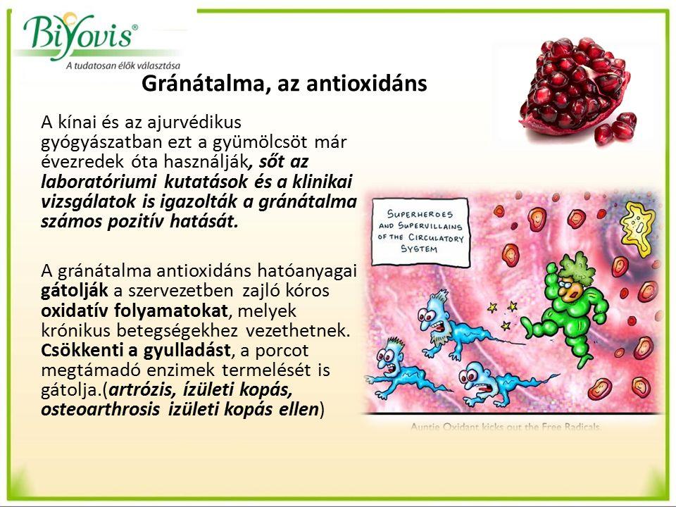 Gránátalma, az antioxidáns 2000-ben kezdett érdeklődést kelteni a gránátalma antioxidáns hatása, amikor egy kutatócsoport kimutatta a gránátalma hatékonyságát az atherosclerosis kezelésében.