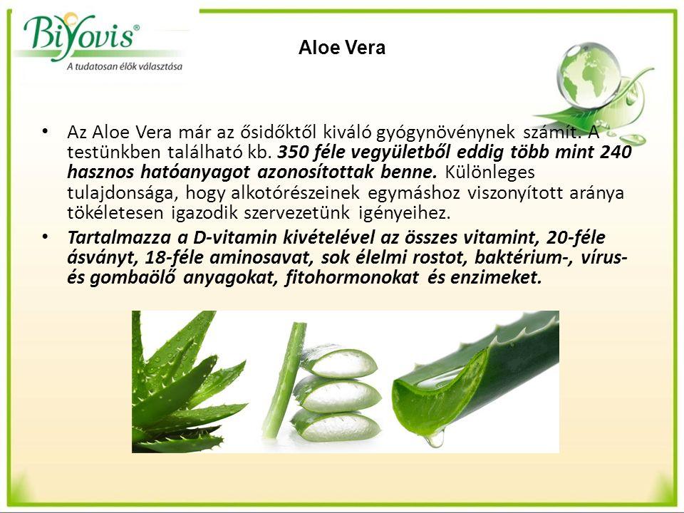 Aloe Vera Az Aloe Vera már az ősidőktől kiváló gyógynövénynek számít. A testünkben található kb. 350 féle vegyületből eddig több mint 240 hasznos ható