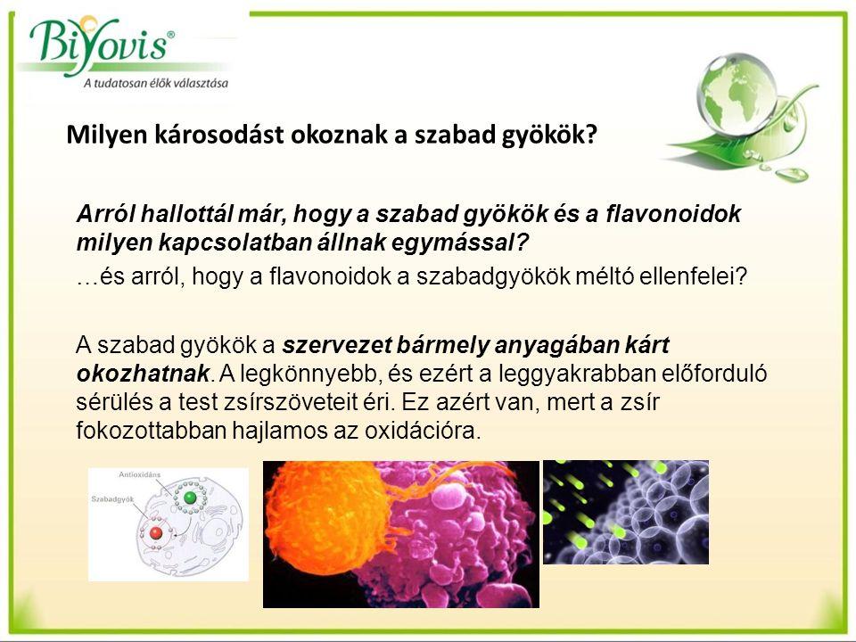 Arról hallottál már, hogy a szabad gyökök és a flavonoidok milyen kapcsolatban állnak egymással? …és arról, hogy a flavonoidok a szabadgyökök méltó el