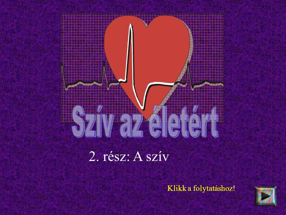 2. rész: A szív Klikk a folytatáshoz!