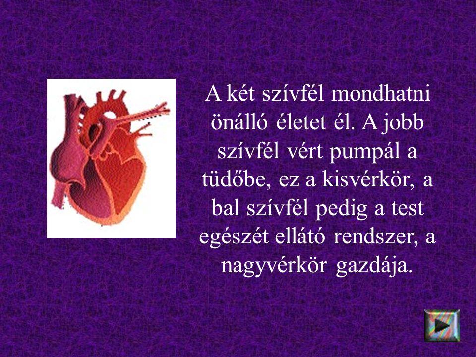 A két szívfél mondhatni önálló életet él.
