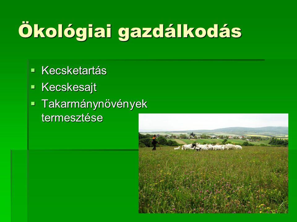 Ökológiai gazdálkodás  Kecsketartás  Kecskesajt  Takarmánynövények termesztése
