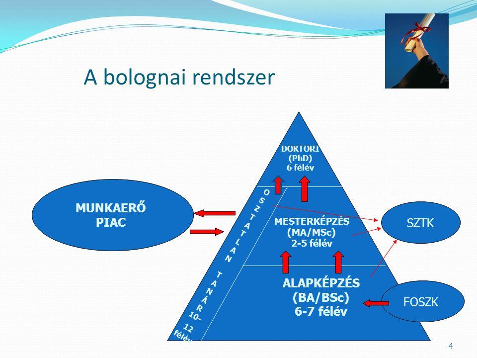 4 A bolognai rendszer DOKTORI (PhD) 6 félév MESTERKÉPZÉS (MA/MSc) 2-5 félév ALAPKÉPZÉS (BA/BSc) 6-7 félév O S Z T A T L A N T A N Á R 10- 12 félév SZT