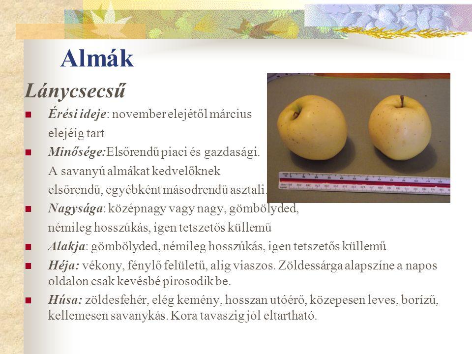 Almák Lánycsecsű Érési ideje: november elejétől március elejéig tart Minősége:Elsőrendű piaci és gazdasági. A savanyú almákat kedvelőknek elsőrendű, e