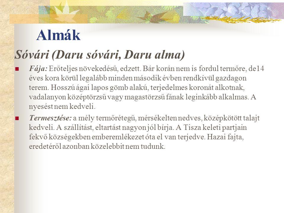 Almák Sóvári (Daru sóvári, Daru alma) Fája: Erőteljes növekedésű, edzett. Bár korán nem is fordul termőre, de14 éves kora körül legalább minden másodi
