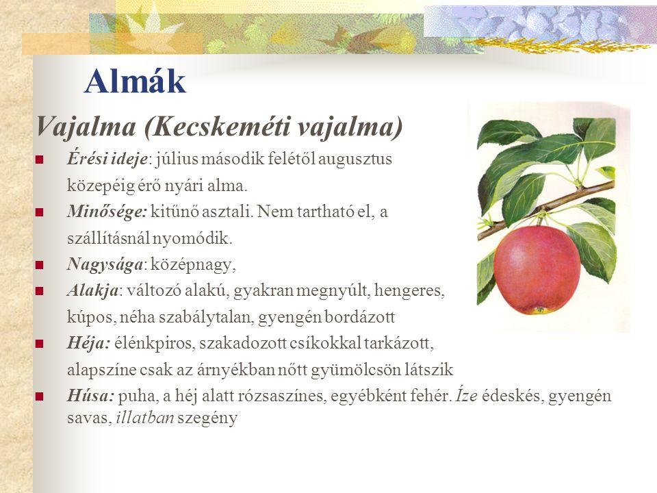 Almák Vajalma (Kecskeméti vajalma) Érési ideje: július második felétől augusztus közepéig érő nyári alma. Minősége: kitűnő asztali. Nem tartható el, a