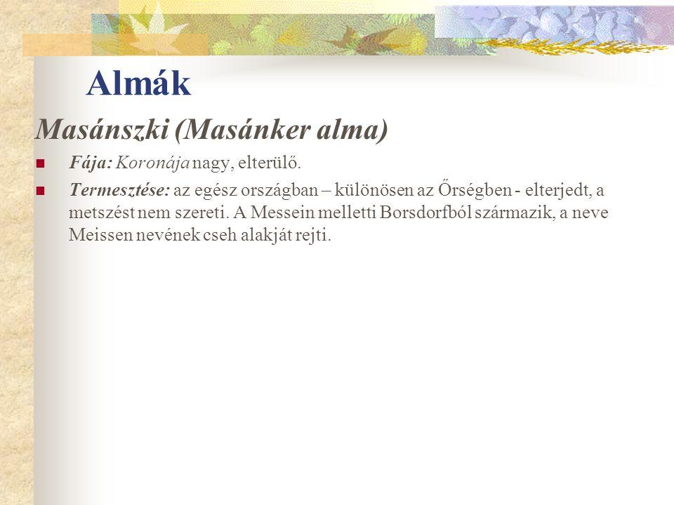 Almák Masánszki (Masánker alma) Fája: Koronája nagy, elterülő.