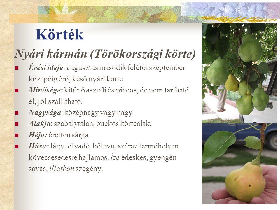 Körték Nyári kármán (Törökországi körte) Érési ideje: augusztus második felétől szeptember közepéig érő, késő nyári körte Minősége: kitűnő asztali és