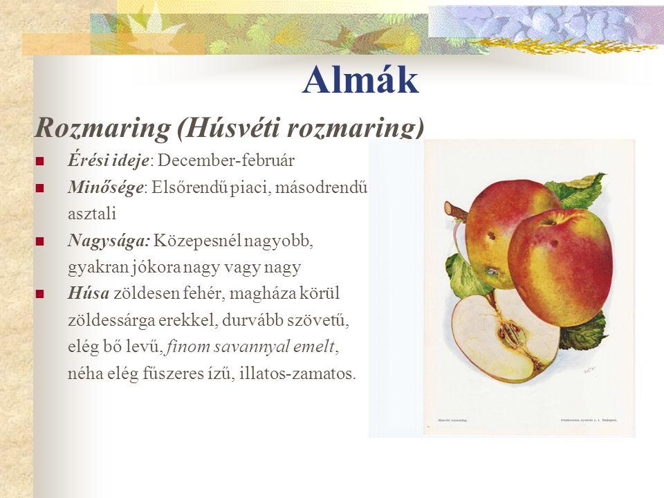 Almák Rozmaring (Húsvéti rozmaring) Érési ideje: December-február Minősége: Elsőrendű piaci, másodrendű asztali Nagysága: Közepesnél nagyobb, gyakran