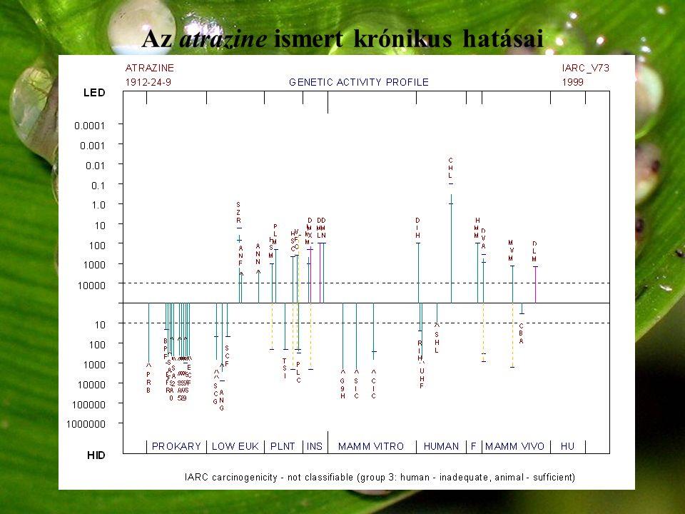 Az atrazine és bomlástermékei Aromatáz-induktor androgének ösztrogének Ösztrogén- agonista Sanderson et al.