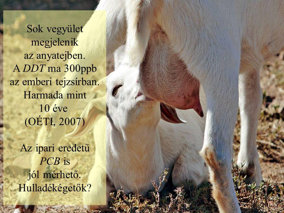 Sok vegyület megjelenik az anyatejben.A DDT ma 300ppb az emberi tejzsírban.