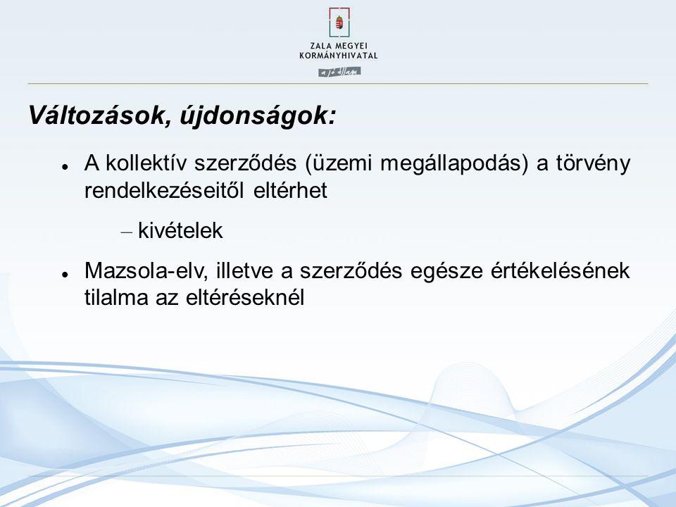Az új munka törvénykönyve V.fejezet – A munkaviszony alanyai VI.