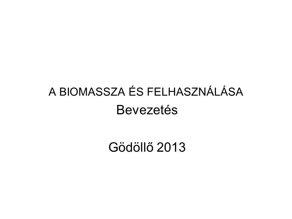 A BIOMASSZA ÉS FELHASZNÁLÁSA Bevezetés Gödöllő 2013
