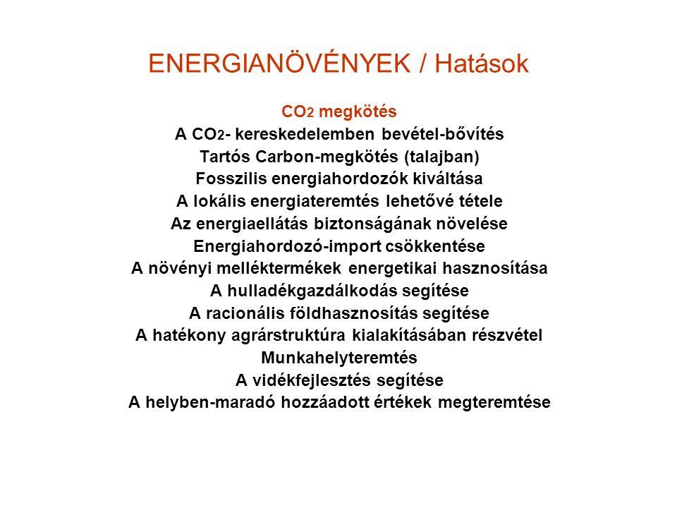 ENERGIANÖVÉNYEK / Hatások CO 2 megkötés A CO 2 - kereskedelemben bevétel-bővítés Tartós Carbon-megkötés (talajban) Fosszilis energiahordozók kiváltása A lokális energiateremtés lehetővé tétele Az energiaellátás biztonságának növelése Energiahordozó-import csökkentése A növényi melléktermékek energetikai hasznosítása A hulladékgazdálkodás segítése A racionális földhasznosítás segítése A hatékony agrárstruktúra kialakításában részvétel Munkahelyteremtés A vidékfejlesztés segítése A helyben-maradó hozzáadott értékek megteremtése