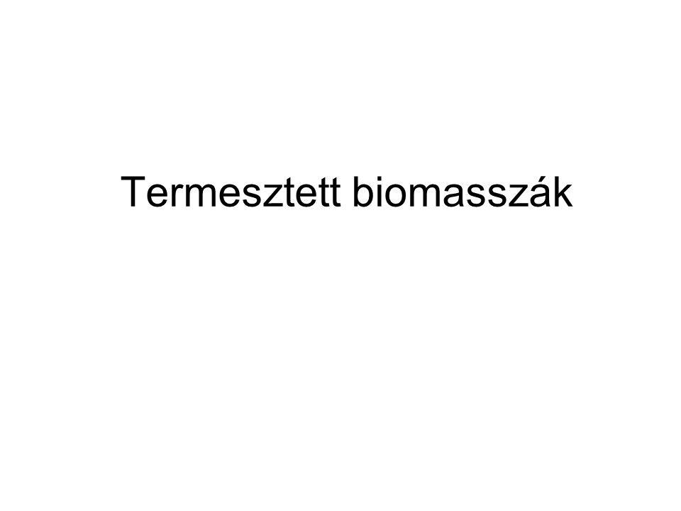 Termesztett biomasszák