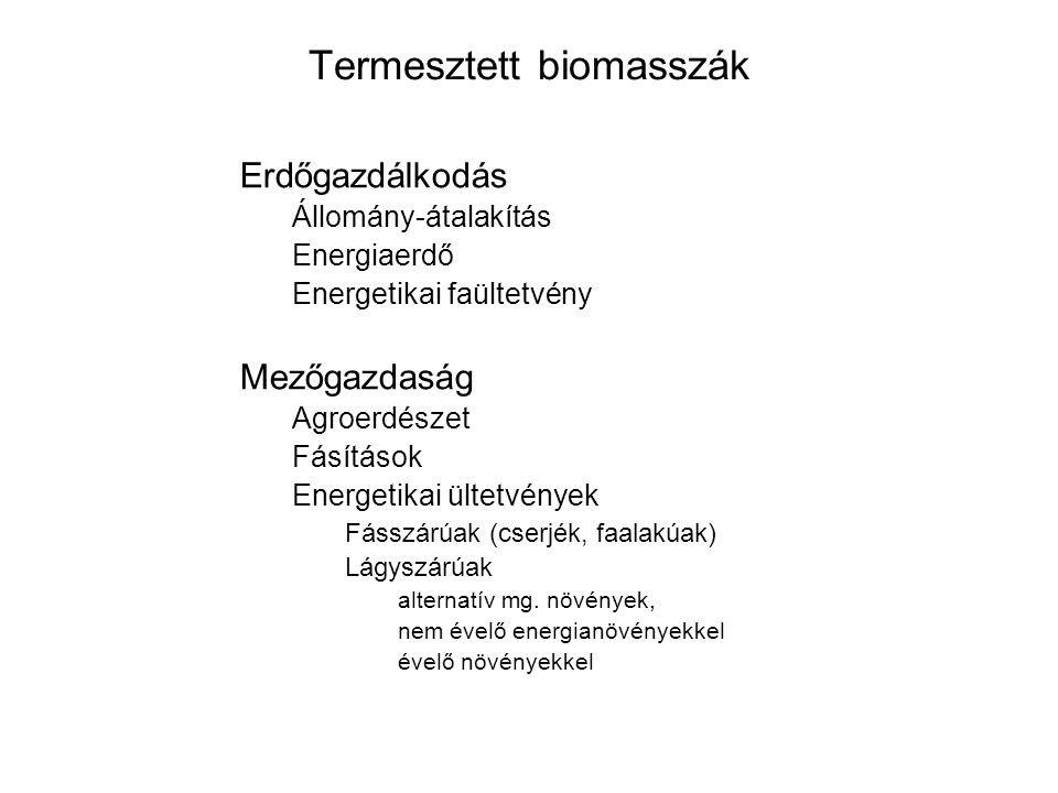 Termesztett biomasszák Erdőgazdálkodás Állomány-átalakítás Energiaerdő Energetikai faültetvény Mezőgazdaság Agroerdészet Fásítások Energetikai ültetvények Fásszárúak (cserjék, faalakúak) Lágyszárúak alternatív mg.