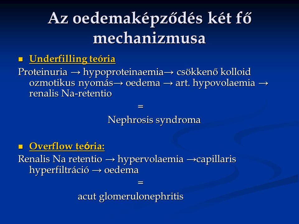 Az oedemaképződés két fő mechanizmusa Underfilling teória Underfilling teória Proteinuria → hypoproteinaemia→ csökkenő kolloid ozmotikus nyomás→ oedema → art.