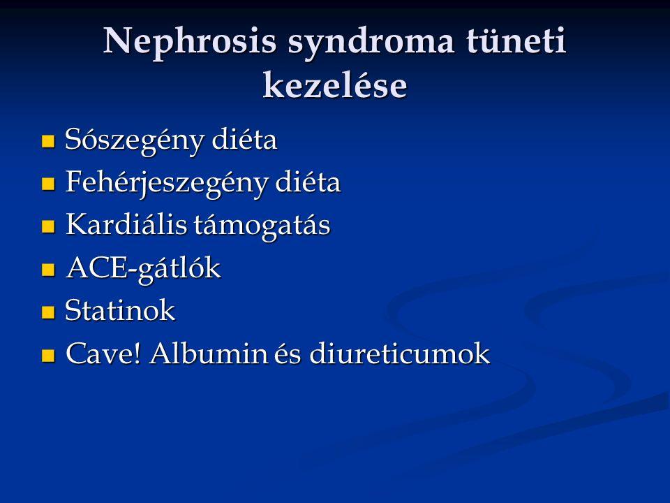 Nephrosis syndroma tüneti kezelése Sószegény diéta Sószegény diéta Fehérjeszegény diéta Fehérjeszegény diéta Kardiális támogatás Kardiális támogatás ACE-gátlók ACE-gátlók Statinok Statinok Cave.