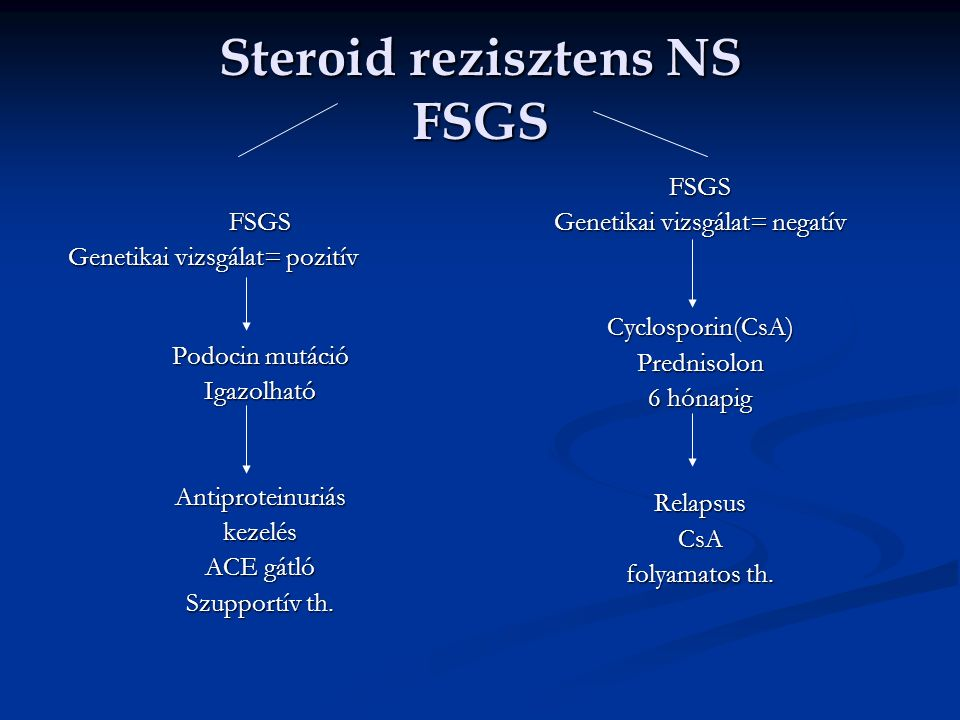 Steroid rezisztens NS FSGS FSGS Genetikai vizsgálat= pozitív Podocin mutáció IgazolhatóAntiproteinuriáskezelés ACE gátló Szupportív th.
