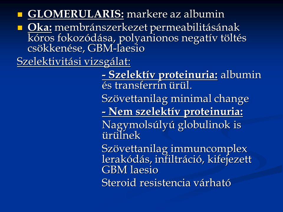 GLOMERULARIS: markere az albumin GLOMERULARIS: markere az albumin Oka: membránszerkezet permeabilitásának kóros fokozódása, polyanionos negatív töltés csökkenése, GBM-laesio Oka: membránszerkezet permeabilitásának kóros fokozódása, polyanionos negatív töltés csökkenése, GBM-laesio Szelektivitási vizsgálat: - Szelektív proteinuria: albumin és transferrin ürül.