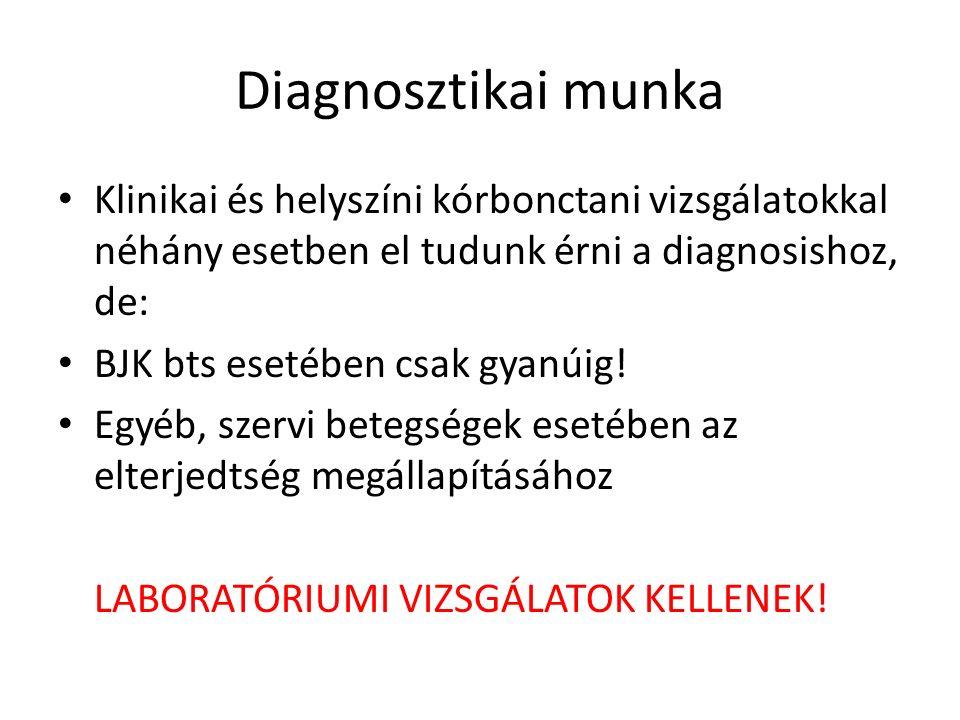 Diagnosztikai munka Klinikai és helyszíni kórbonctani vizsgálatokkal néhány esetben el tudunk érni a diagnosishoz, de: BJK bts esetében csak gyanúig.