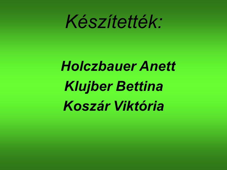 Készítették: Holczbauer Anett Klujber Bettina Koszár Viktória