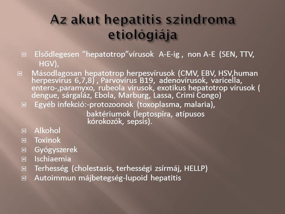 " Elsődlegesen ""hepatotrop""vírusok A-E-ig, non A-E (SEN, TTV, HGV),  Másodlagosan hepatotrop herpesvírusok (CMV, EBV, HSV,human herpesvírus 6,7,8), P"