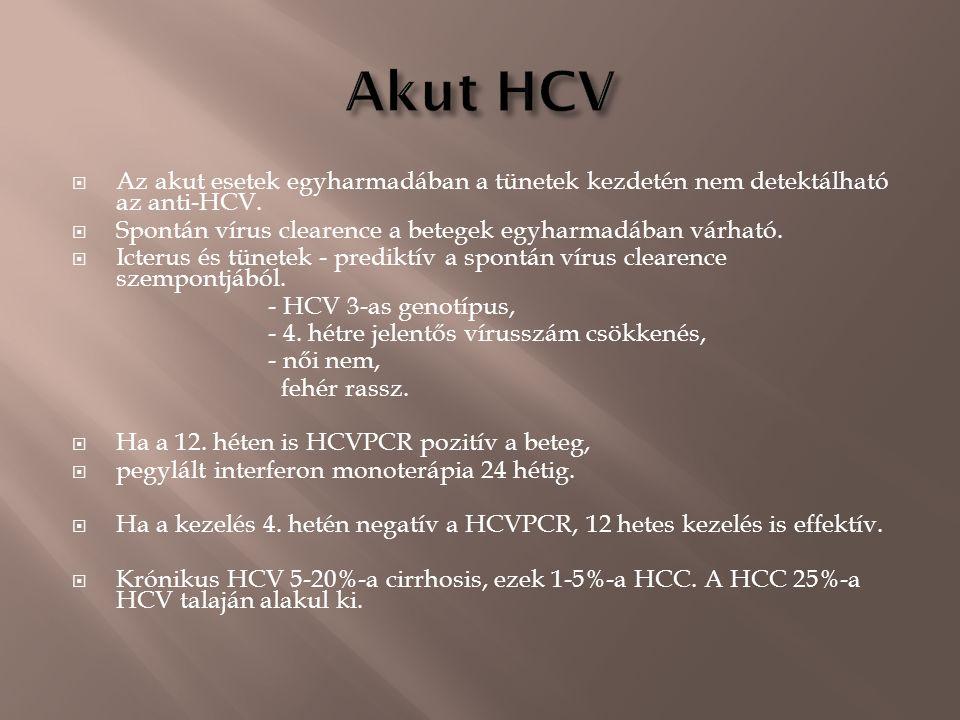  Az akut esetek egyharmadában a tünetek kezdetén nem detektálható az anti-HCV.  Spontán vírus clearence a betegek egyharmadában várható.  Icterus é
