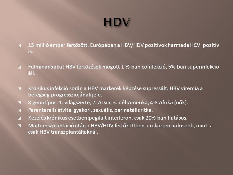  15 millió ember fertőzött. Európában a HBV/HDV pozitívok harmada HCV pozitív is.  Fulminans akut HBV fertőzések mögött 1 %-ban coinfekció, 5%-ban s