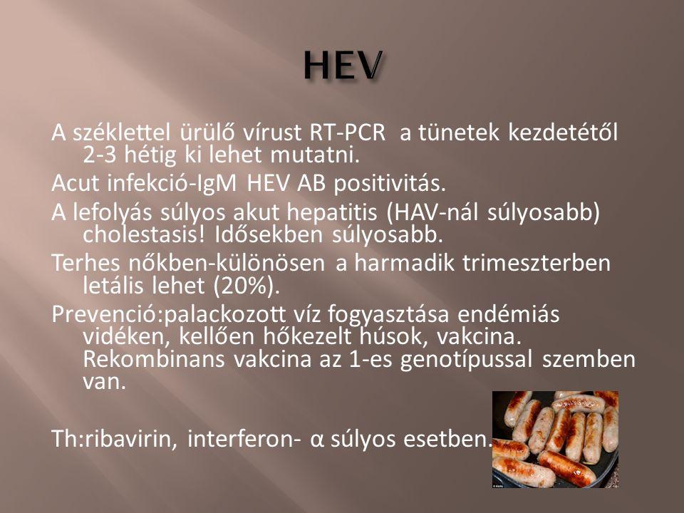 A széklettel ürülő vírust RT-PCR a tünetek kezdetétől 2-3 hétig ki lehet mutatni. Acut infekció-IgM HEV AB positivitás. A lefolyás súlyos akut hepatit