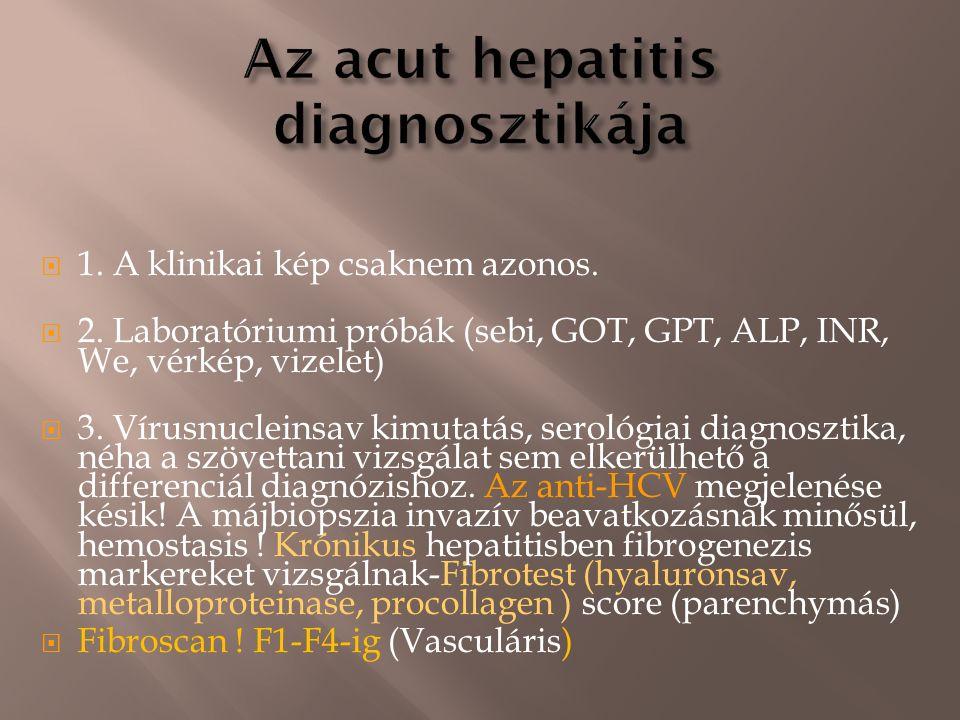  1. A klinikai kép csaknem azonos.  2. Laboratóriumi próbák (sebi, GOT, GPT, ALP, INR, We, vérkép, vizelet)  3. Vírusnucleinsav kimutatás, serológi