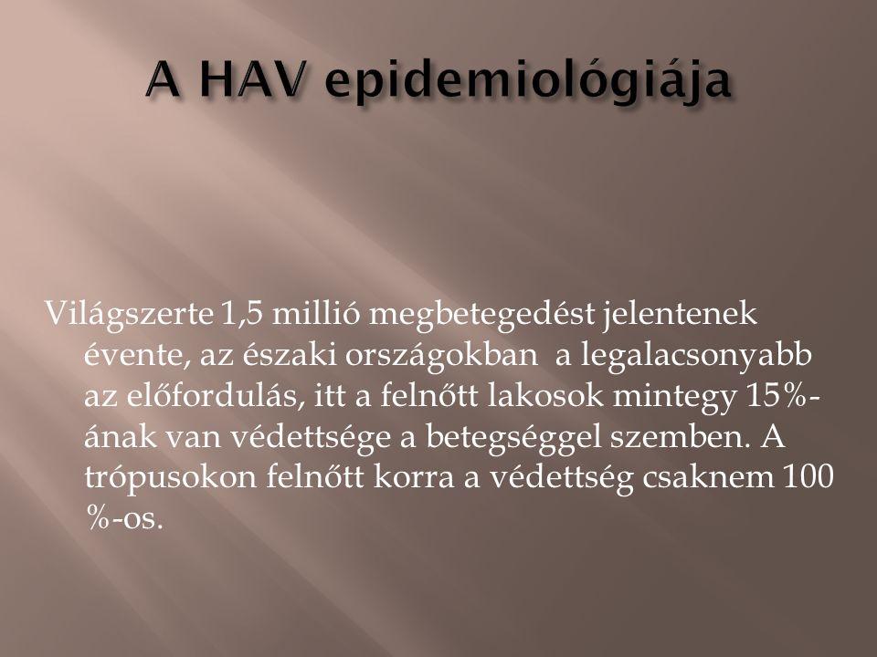 Picornaviridae-RNS-, 1 serotípus  Évente 1-1,5 millió megbetegedés.