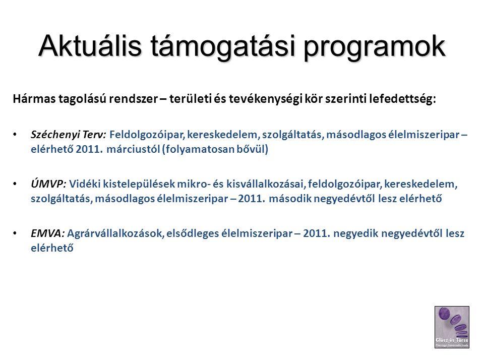 Aktuális támogatási programok Hármas tagolású rendszer – területi és tevékenységi kör szerinti lefedettség: Széchenyi Terv: Feldolgozóipar, kereskedelem, szolgáltatás, másodlagos élelmiszeripar – elérhető 2011.