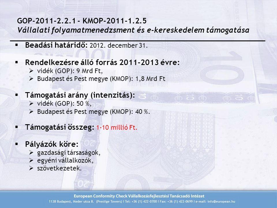  Beadási határidő: 2012. december 31.