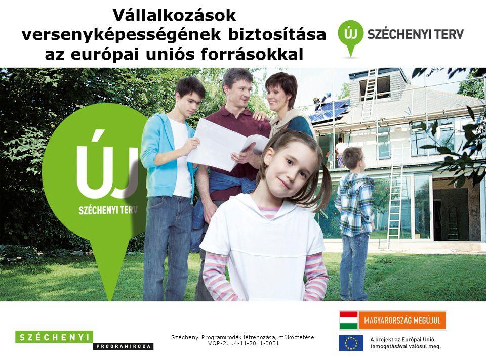 Fejlesztési programok vállalkozásoknak Infrastrukturális beruházás, eszközvásárlás, IT Vállalkozásfejlesztési Program Logisztikai szolgáltatások fejlesztése Közlekedésfejlesztési Program Foglalkoztatás növelése Foglalkoztatási Program K+F, innováció Tudomány – Innováció Program Turisztika Gyógyító Magyarország – Egészségipari Program Energiahatékonyság, megújuló energiaforrások Zöldgazdaság-fejlesztési Program 2011-2013 1.