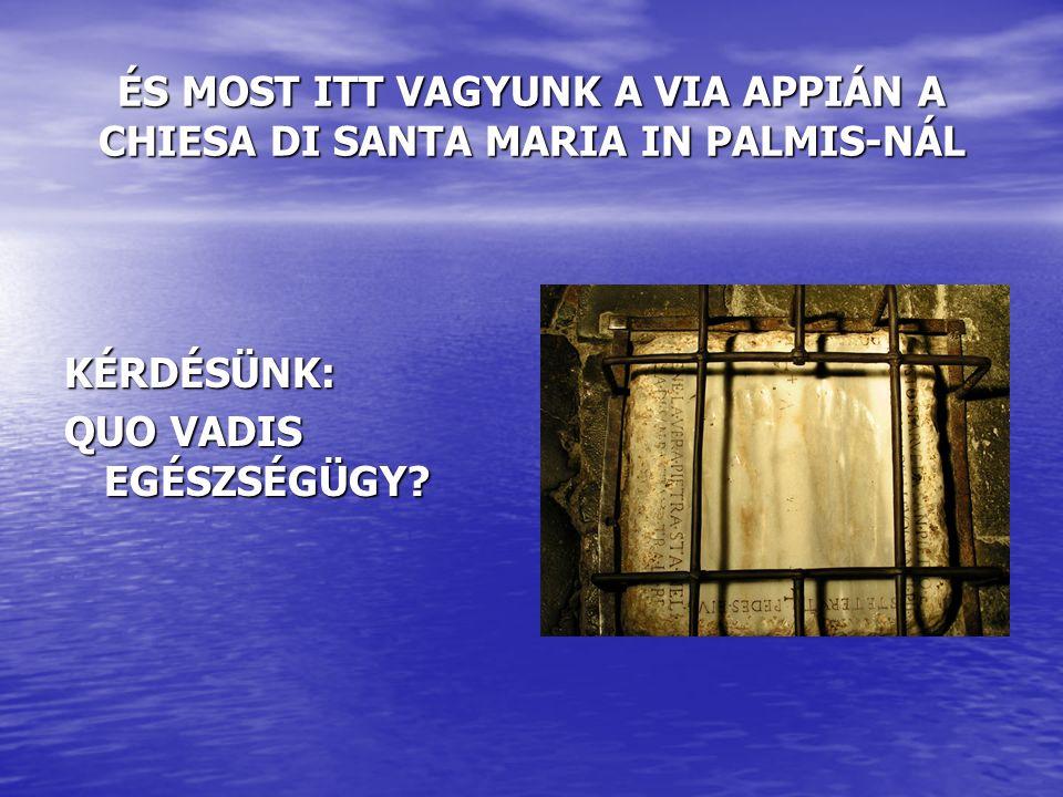 ÉS MOST ITT VAGYUNK A VIA APPIÁN A CHIESA DI SANTA MARIA IN PALMIS-NÁL KÉRDÉSÜNK: QUO VADIS EGÉSZSÉGÜGY