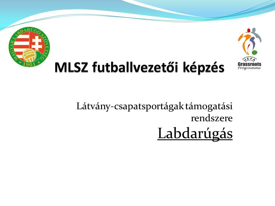 Tartalom  MLSZ sportfejlesztési program  Egyesületi programok elemzése  Tapasztalatok/problémák/kockázatok  Továbblépési irányok/javaslatok