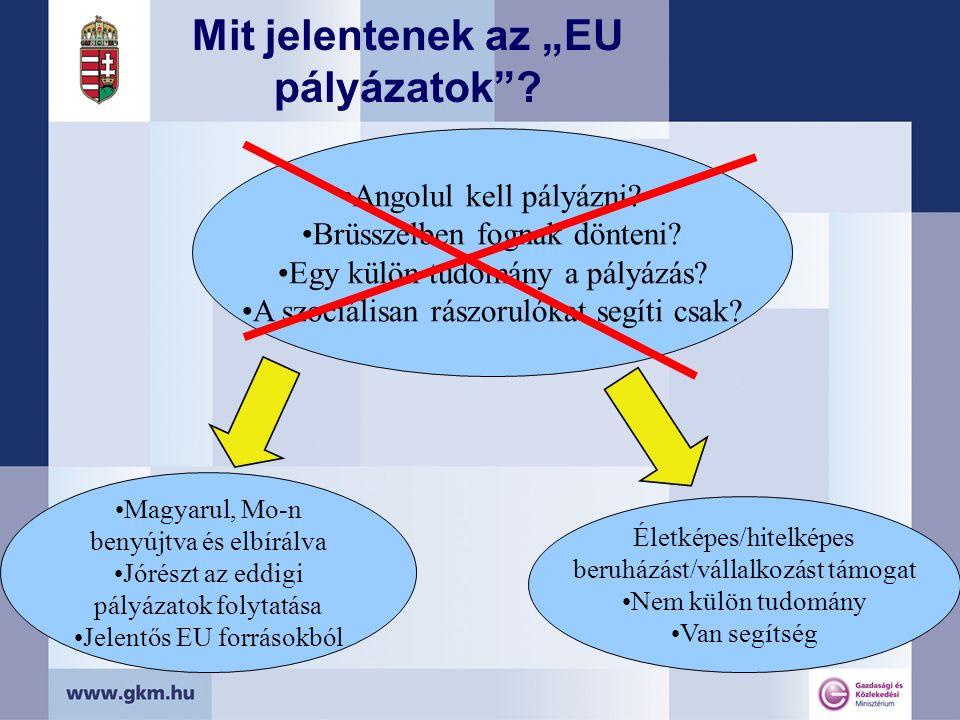 """Mit jelentenek az """"EU pályázatok . Angolul kell pályázni."""
